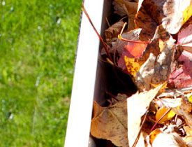 leaves clogging gutter